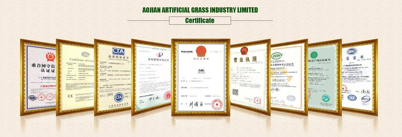 Certificate display