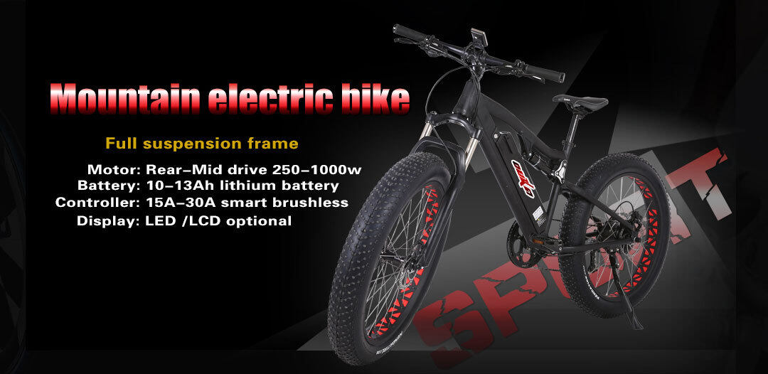 Mountain electric bike