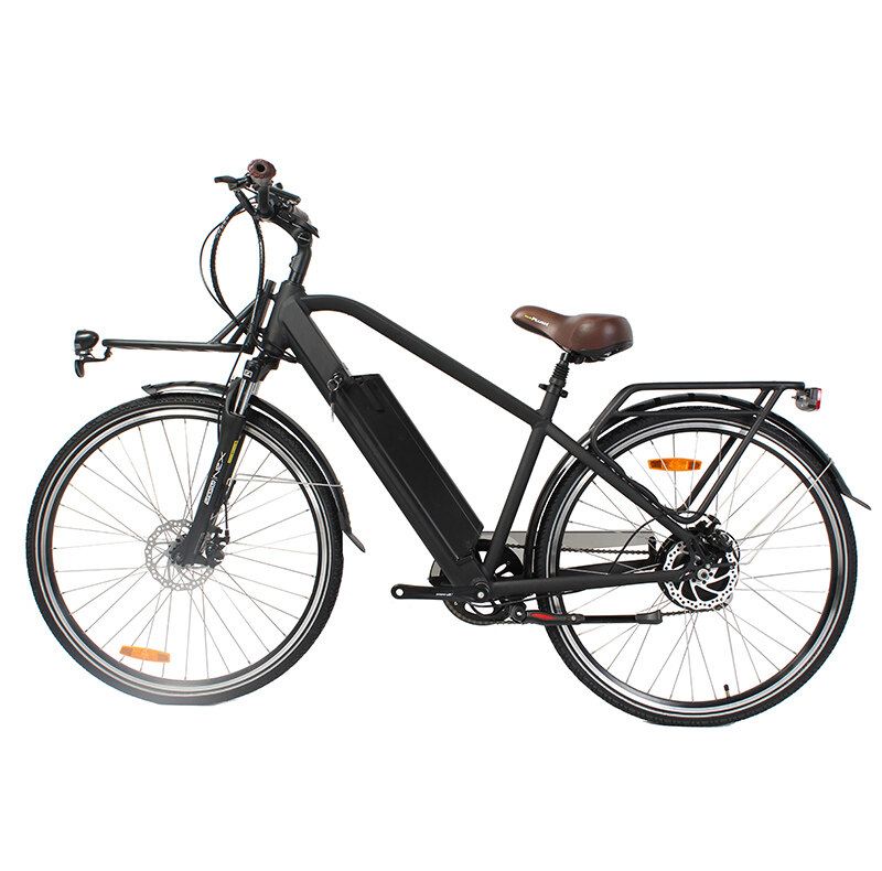 classical hidden frame 36v 250w lady city road electric bike bicycle