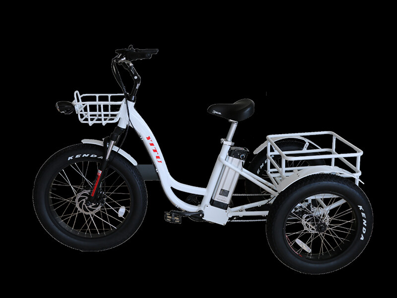 48v 500w 3 Three Wheel Fat Tire Cargo Electric Tricycle