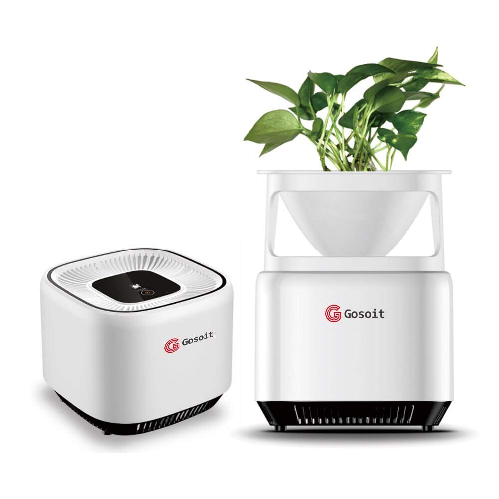 Plant Air Purifier Versatility Multifunction Aroma Type