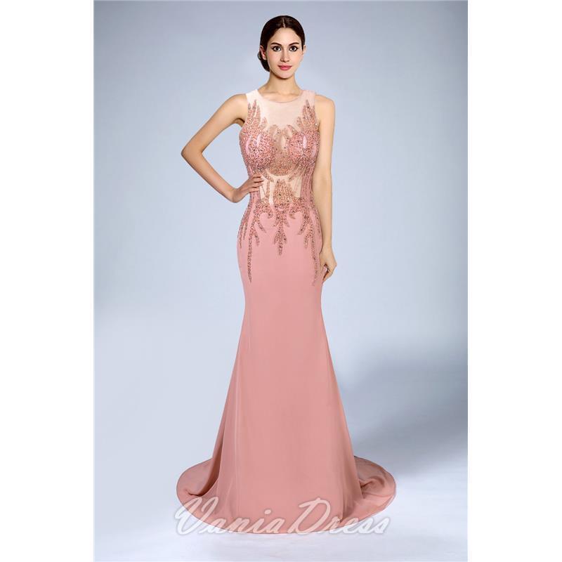 Mermaid Illusion Sleeveless Chiffon Evening Dress 206DS 0