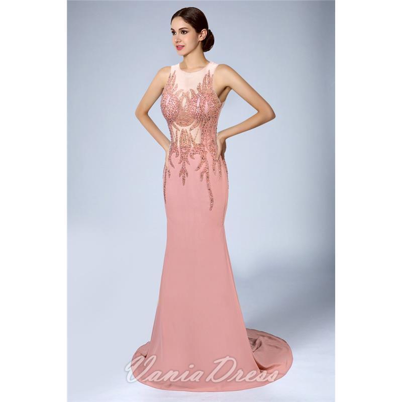 Mermaid Illusion Sleeveless Chiffon Evening Dress 206DS 1
