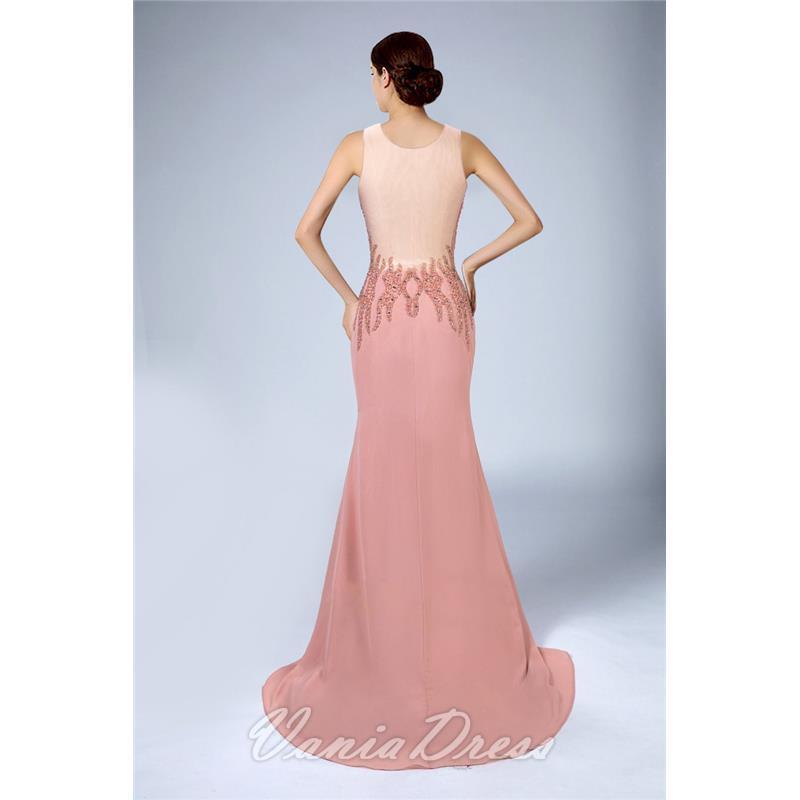 Mermaid Illusion Sleeveless Chiffon Evening Dress 206DS 2