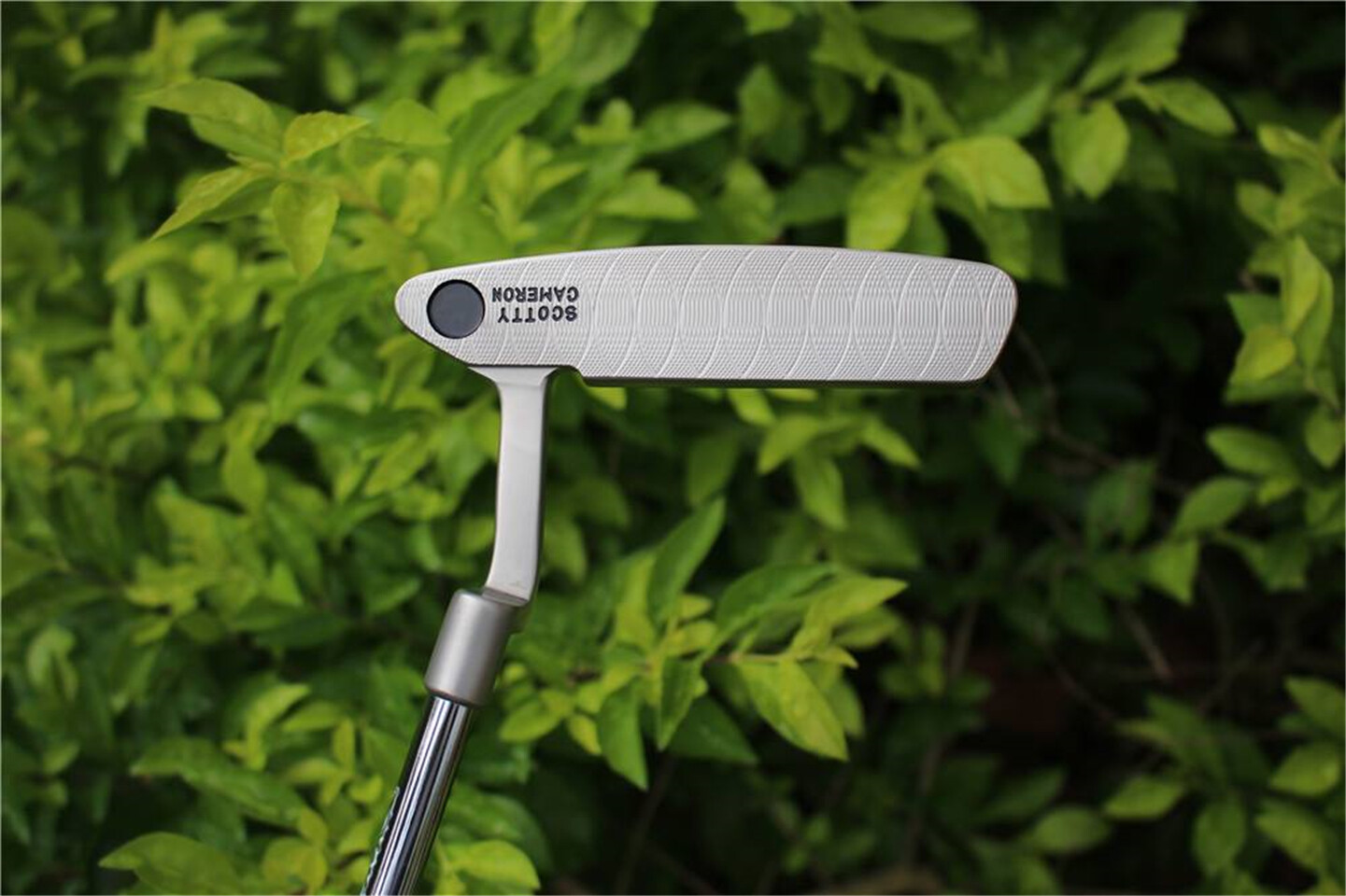 Scotty Cameron Timeless 2 GSS Circle T Putter