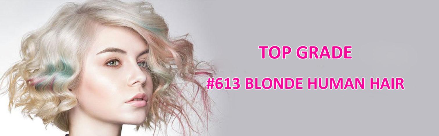 #613 Blonde Human Hair