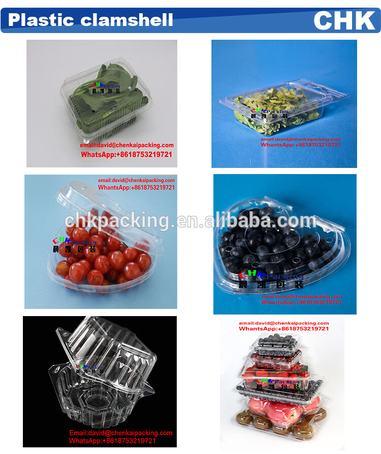 Wholesale New Arrival Frozen Salad Clamshell Fruit Plastic Packaging Container
