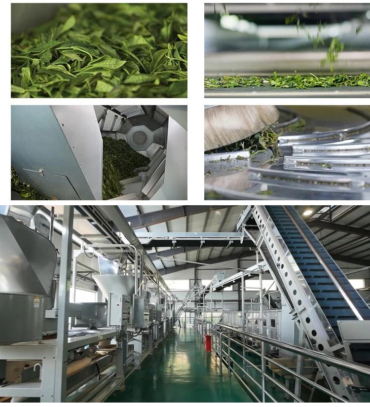 pure organic matcha green tea powder factory